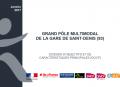 Screenshot-2017-11-15-Modele-charte-graphique-STIF-docp Pem Saint Denis Vf-pdf